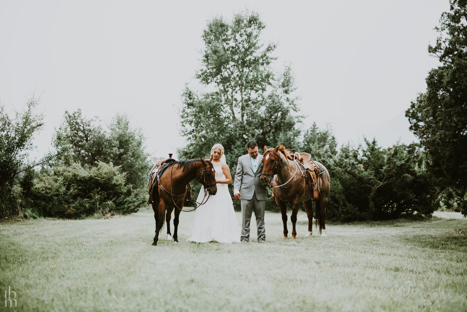 "weddings - ""…a totally unique wedding experience in one of the most beautiful ranch-style locales I've ever been…"" TripAdvisor - August 2015""…friends and family from all over the country came for my wedding and they were blown away by the gorgeous scenery…"" Facebook - September 2018"