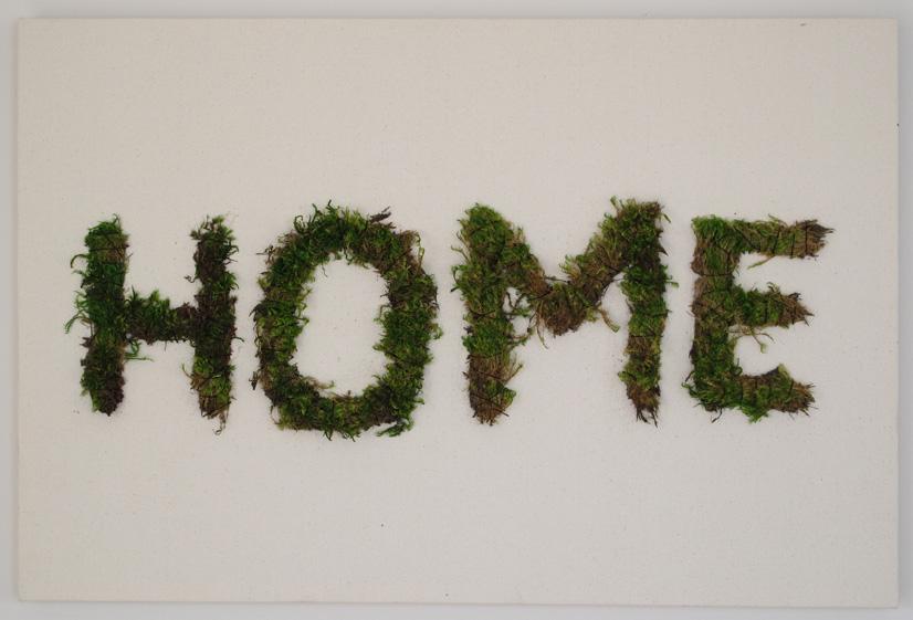 Home_lores.jpg