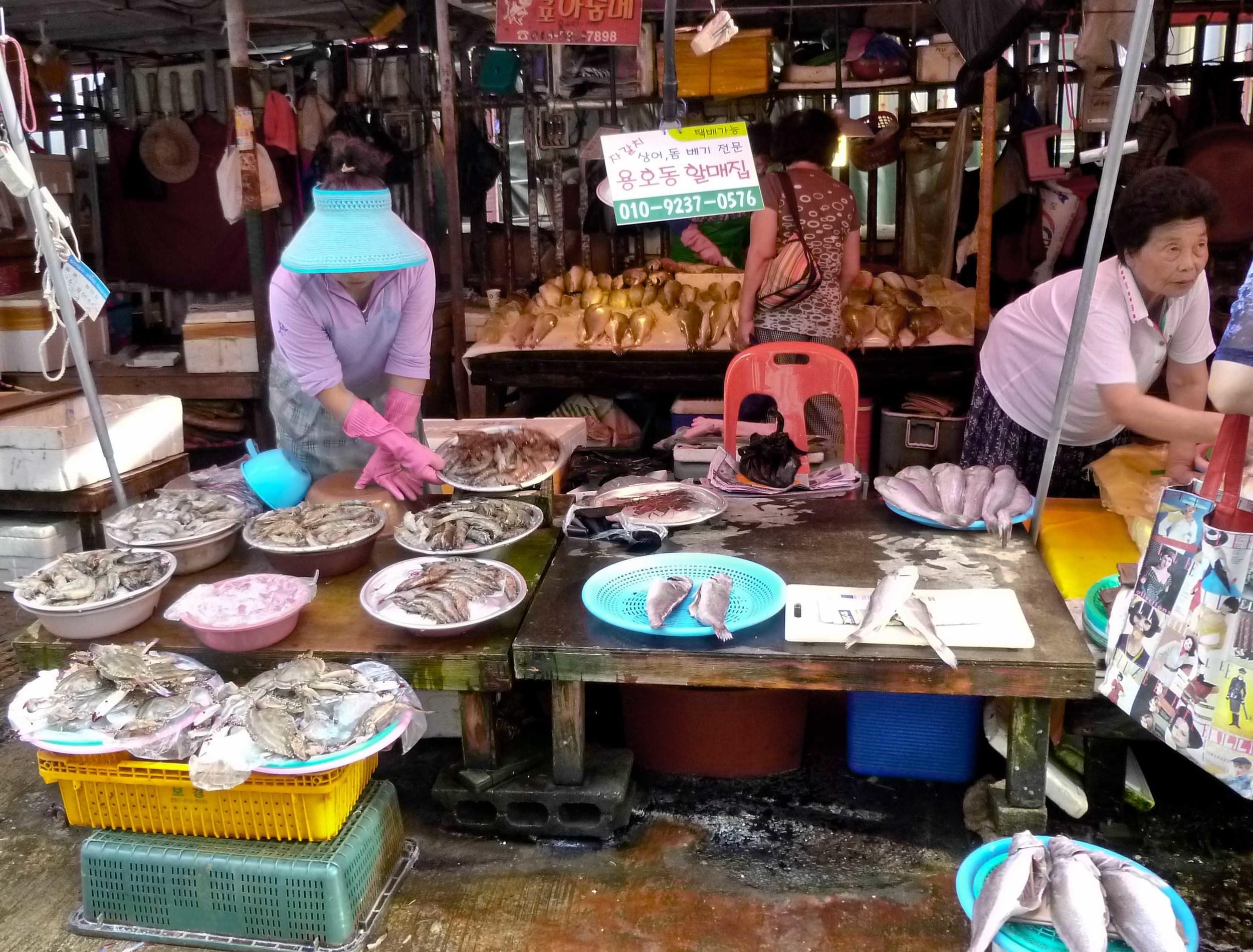 pusan fish market 3.jpg