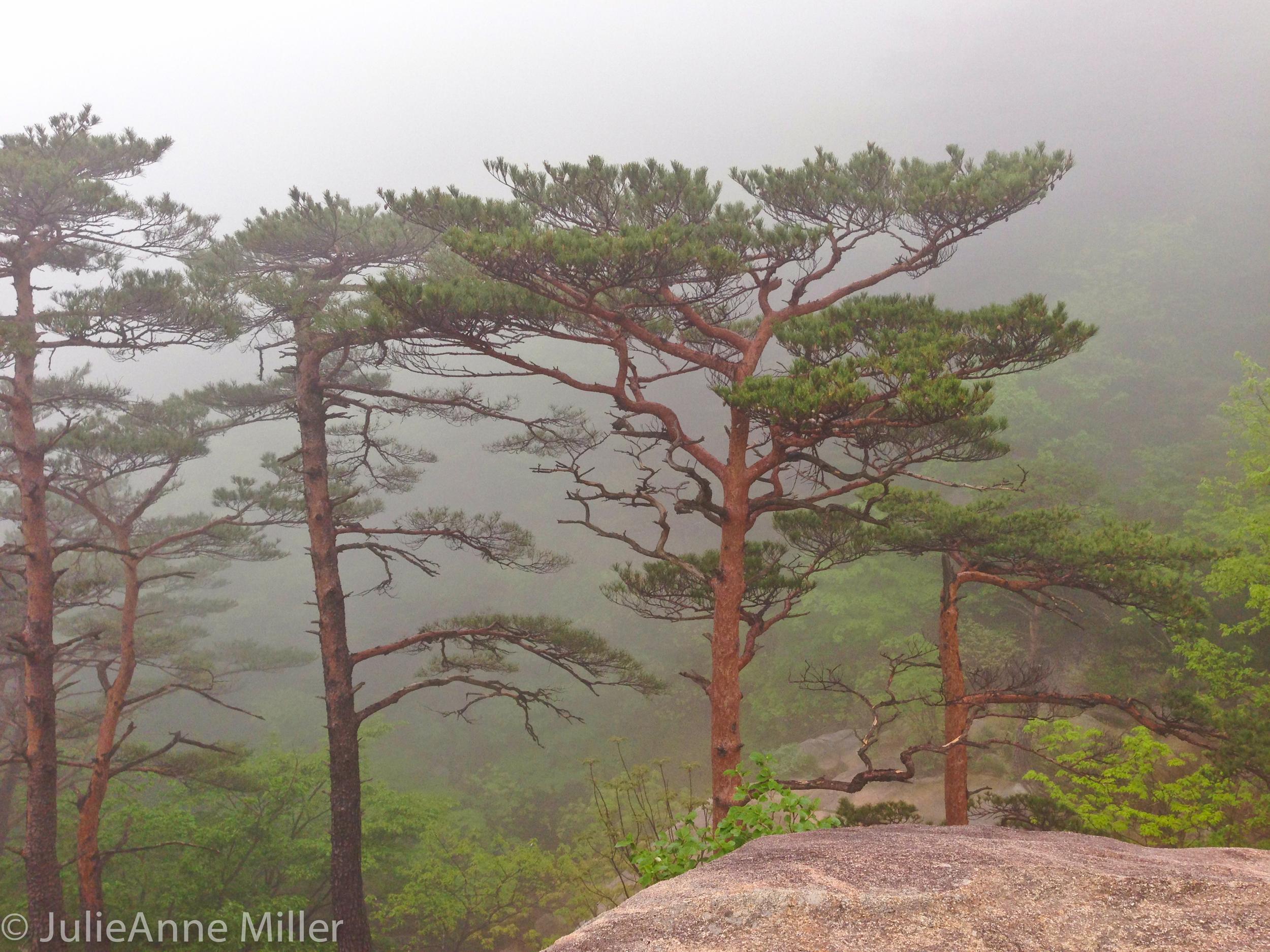 hiking in Seorak San