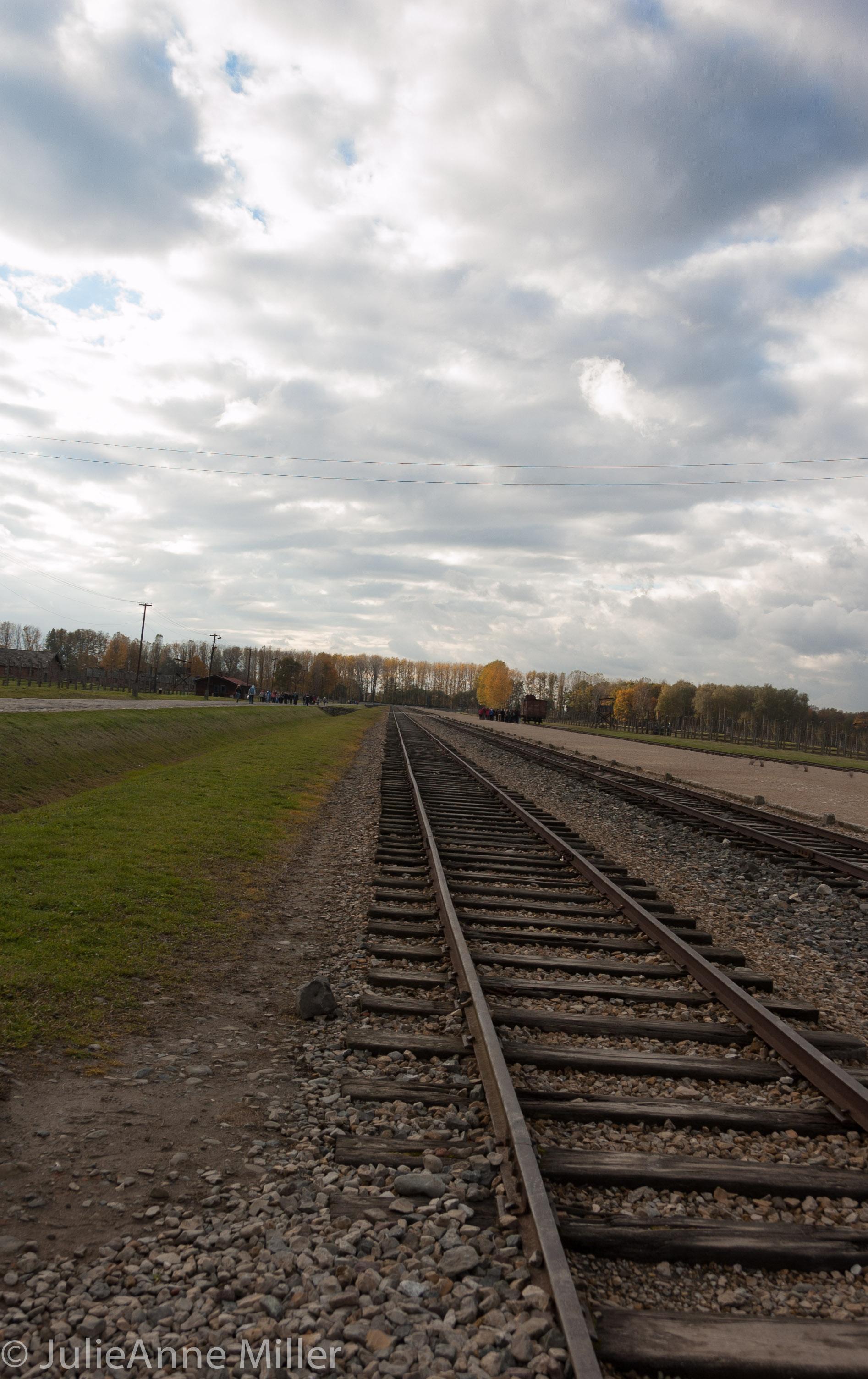 birkenau tracks.jpg