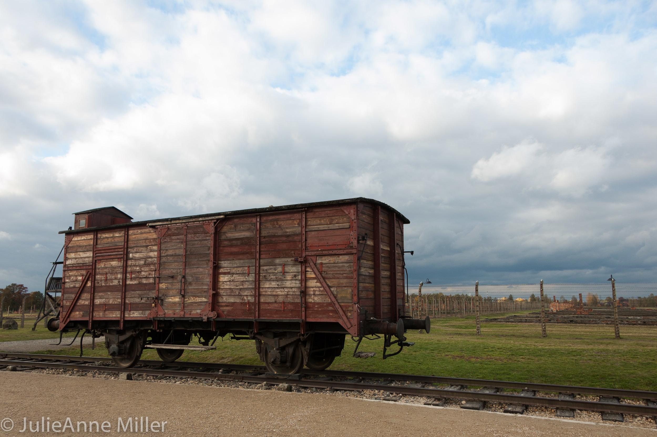 birkenau train.jpg