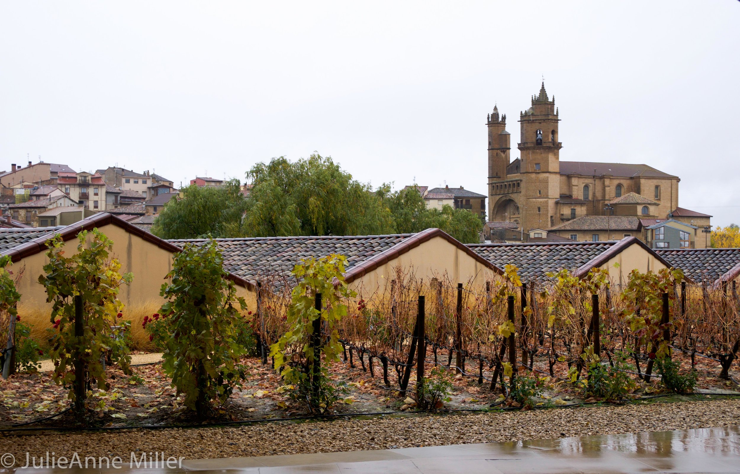 Marques de Riscale winery