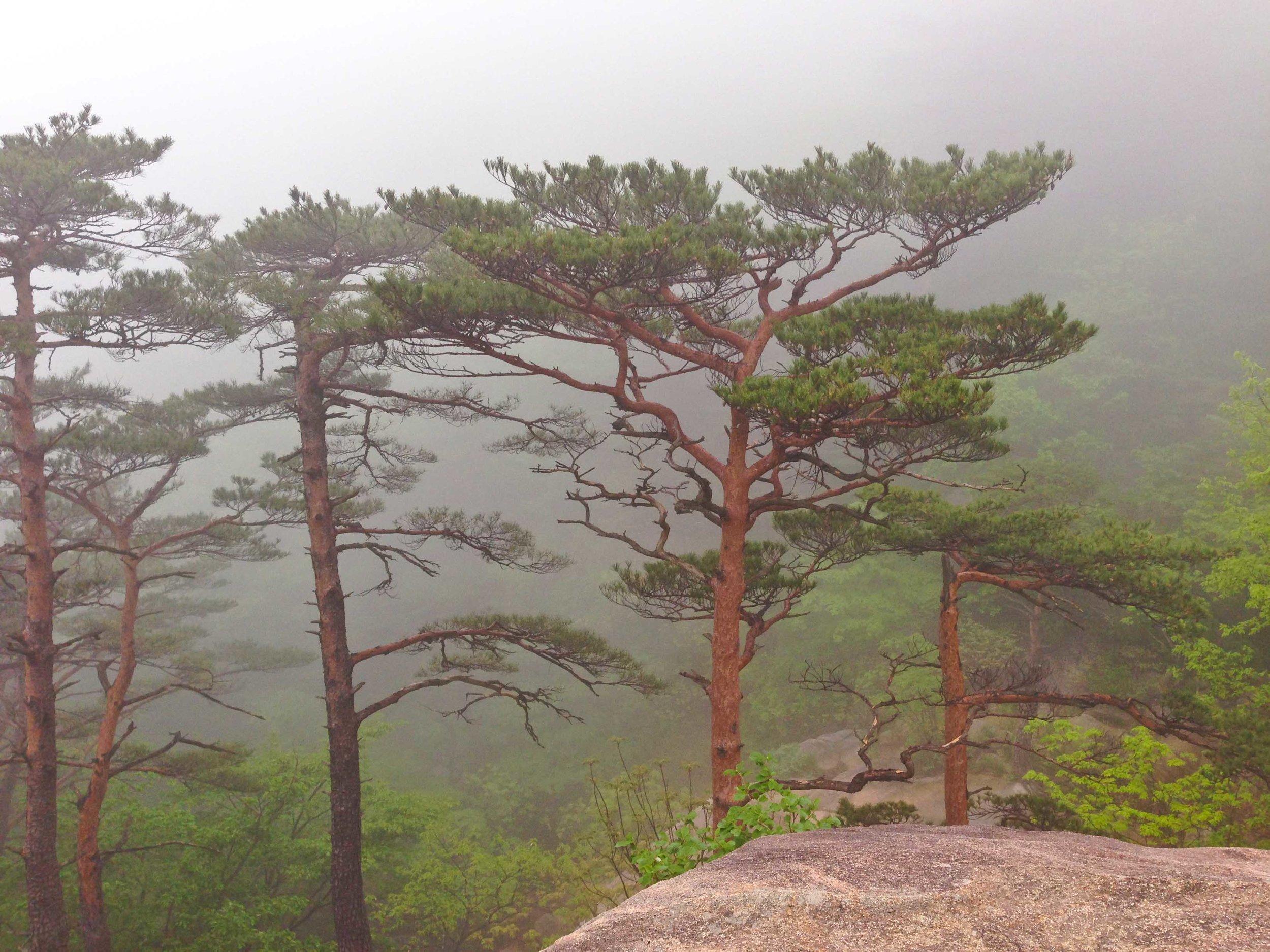 설악산 Sorak National Park