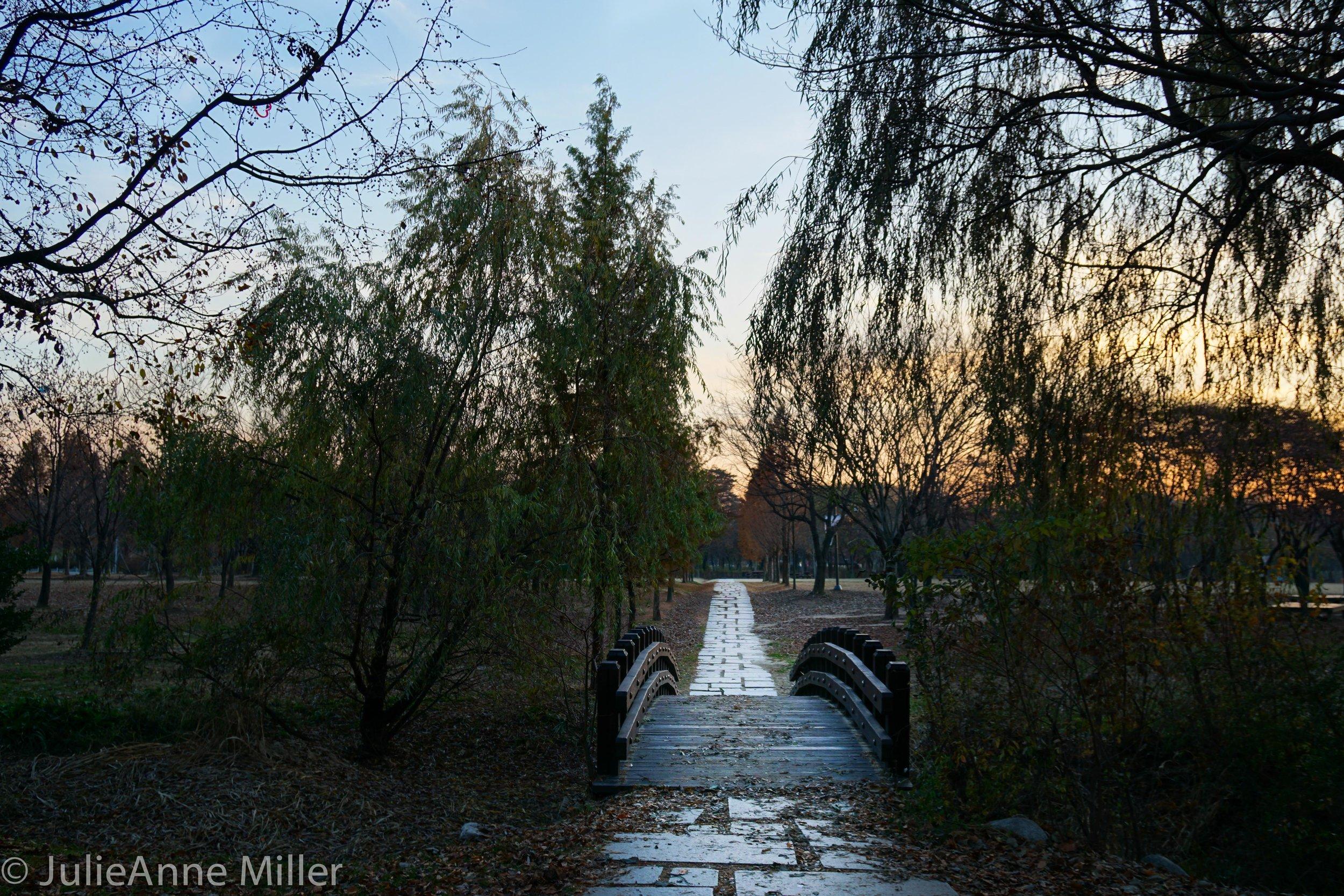 small bridge seoul forest.jpg