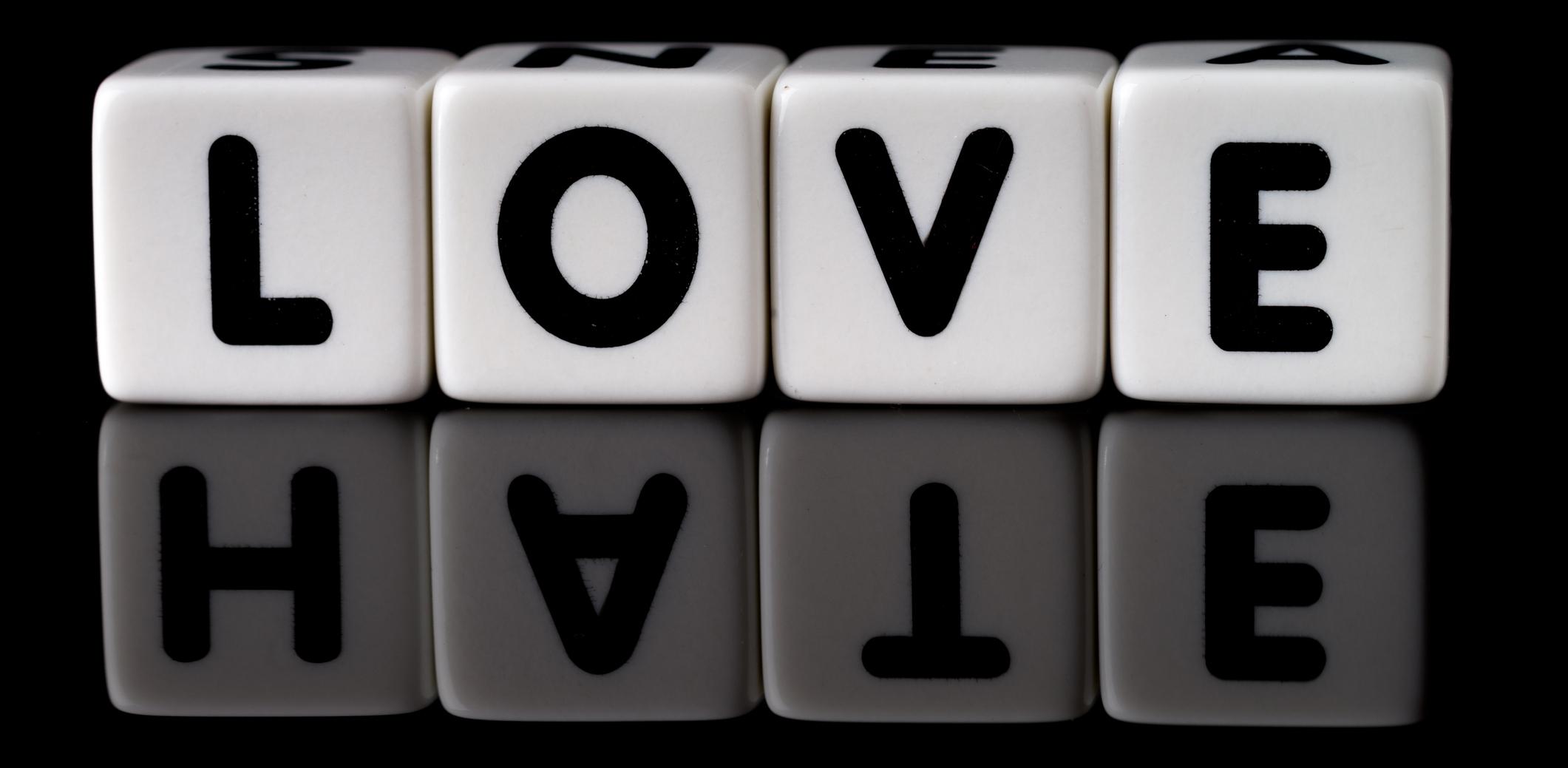 LoveHate Original.jpg