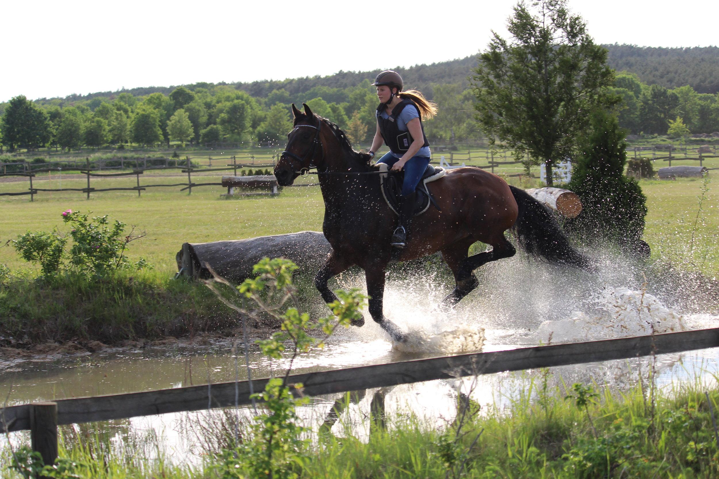 (See-)Pferdchen Donna Dilly und Jana