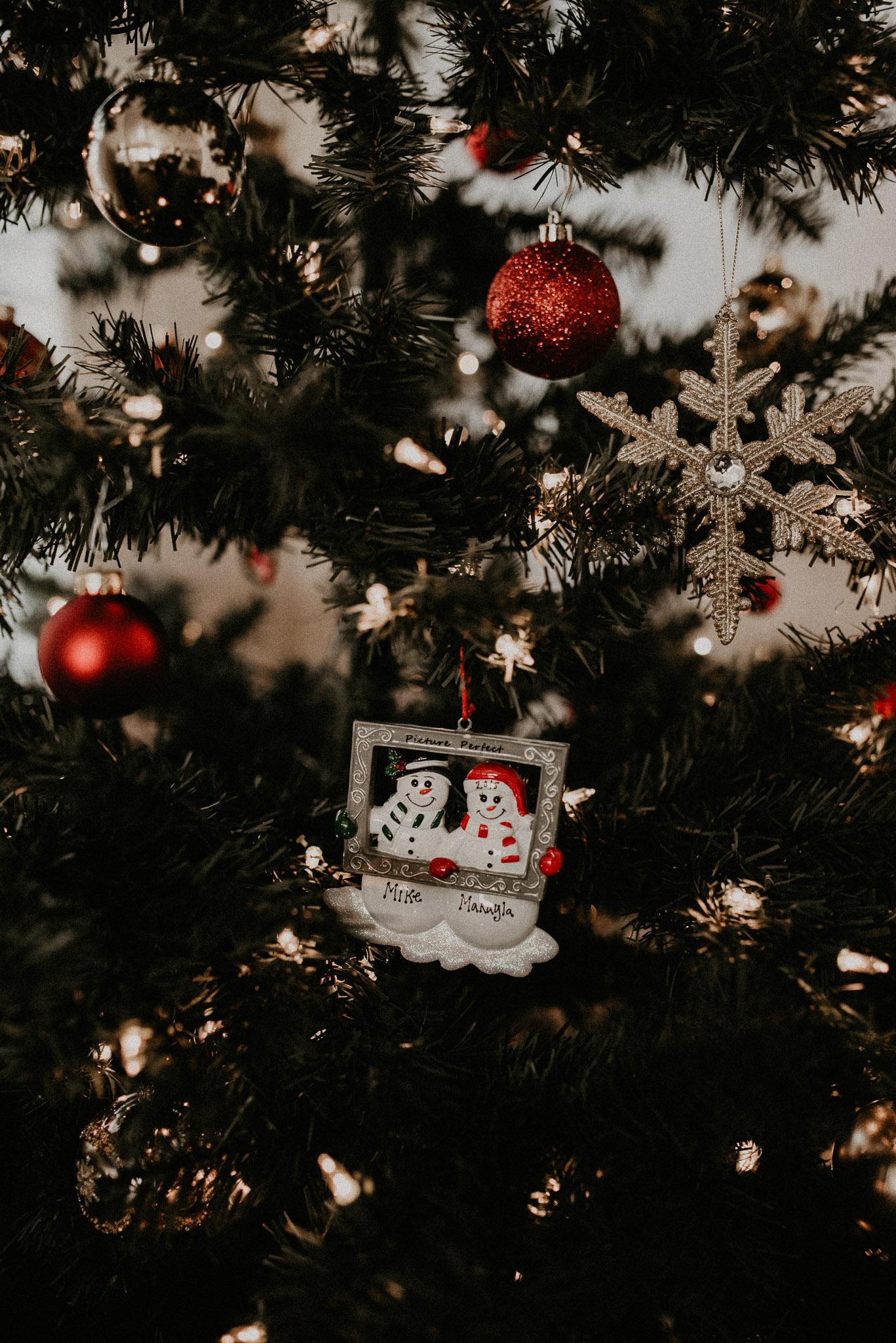 Christmas Season at Home 170118.jpg