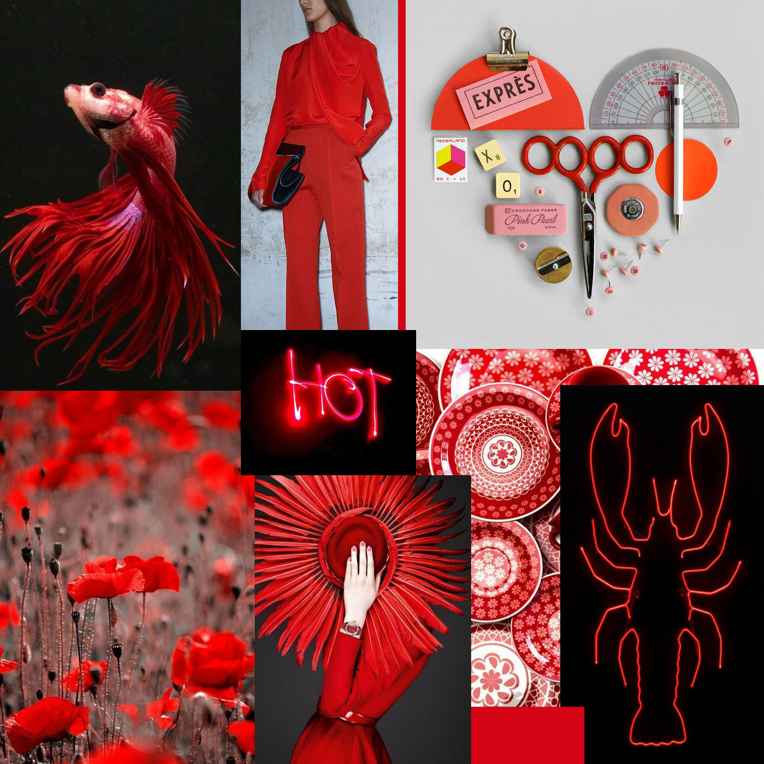 A red hot collage by Liz Nehdi
