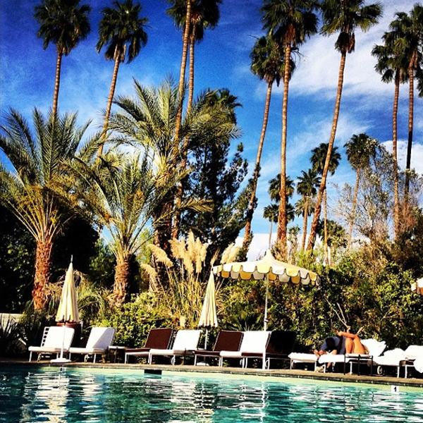 Poolside life in the desert