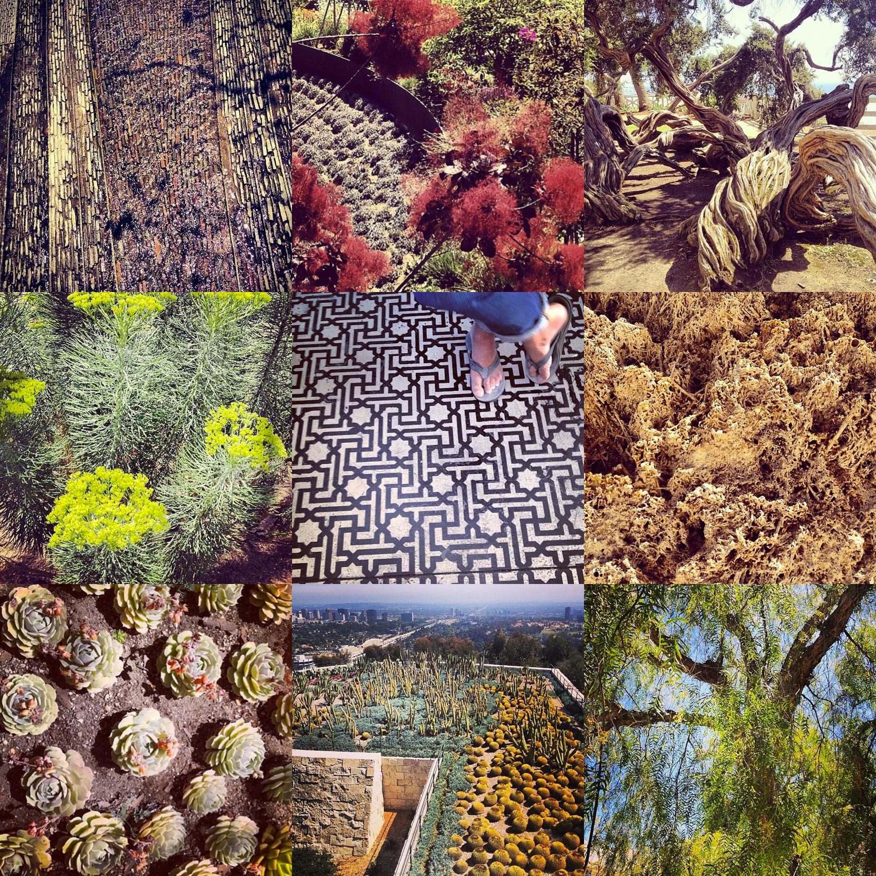 LA Inspiration, a collage by Liz Nehdi
