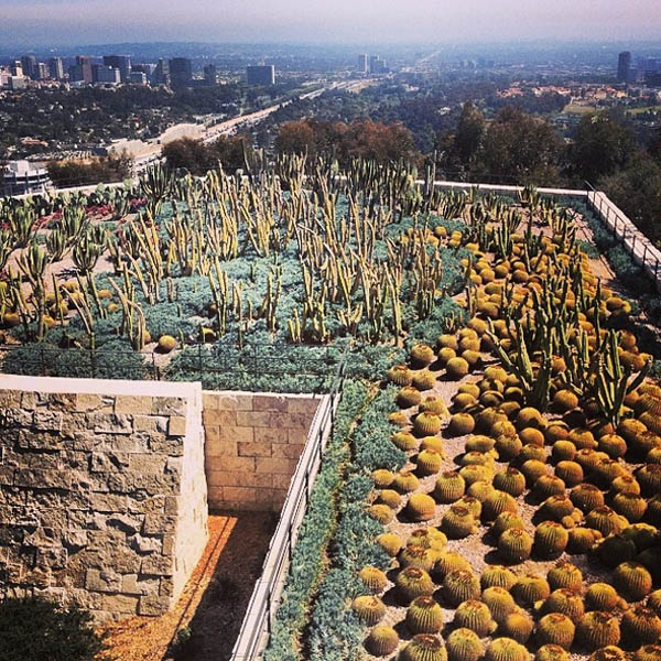 Desert garden with a view of LA