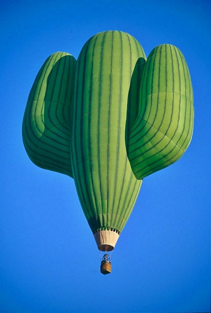 An appropriate choice for hot air ballooning over the desert. Image via  Honestly WTF , which is by the way, a SUPER source for the strange and wonderful