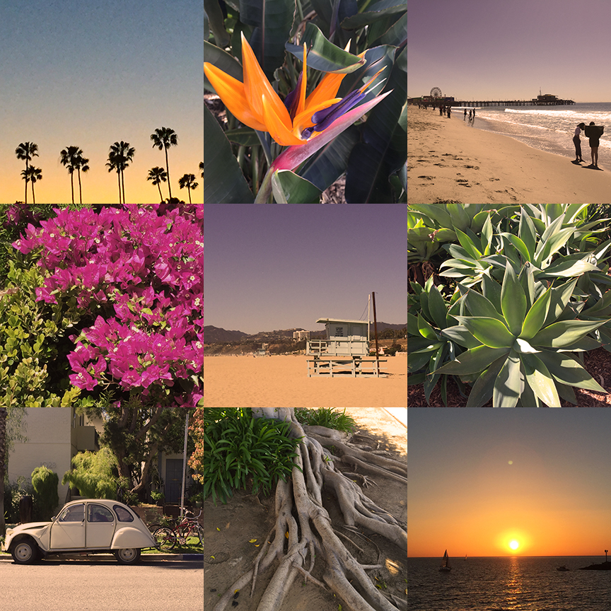 LizNehdi_LA_Collage.jpg
