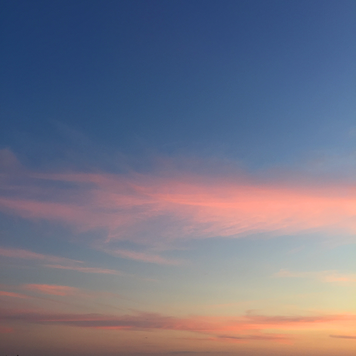 LizNehdi_Sunset_Small.jpg