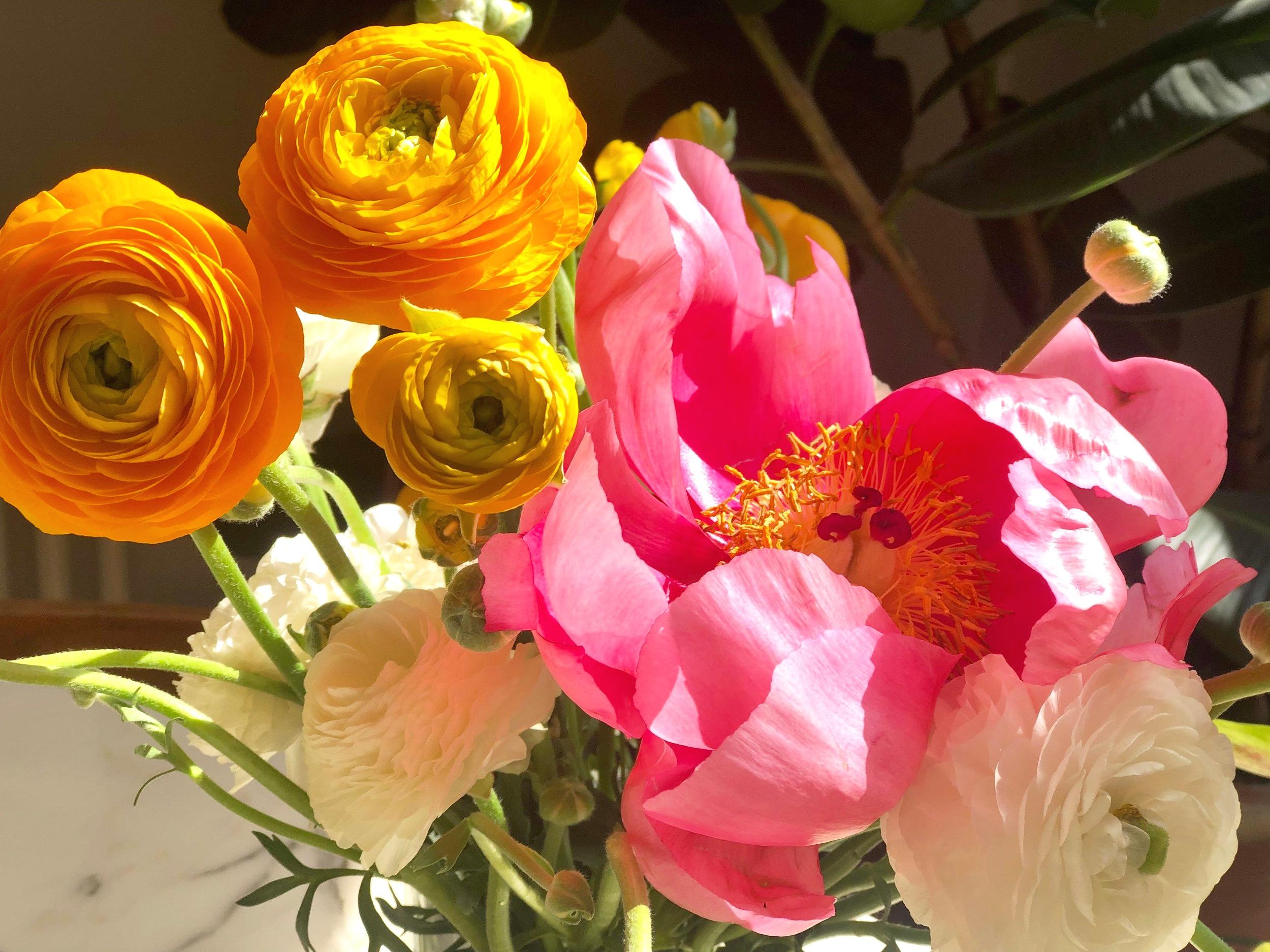 Ranunculus & Peonies