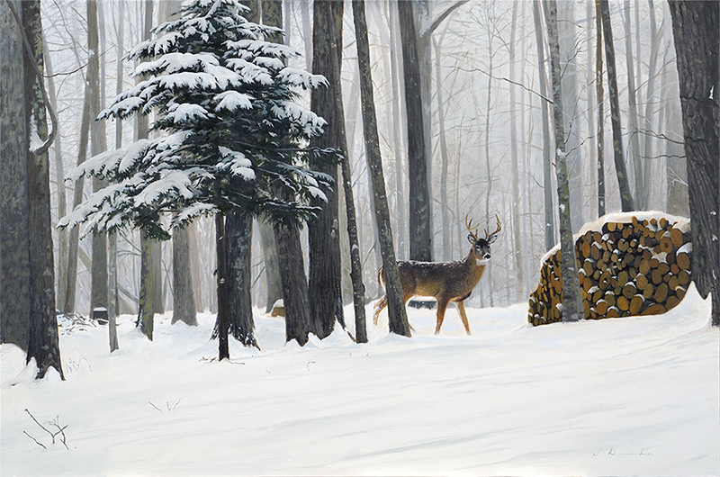 "Buck Fever    - oil, 24 x 36"" Sold"