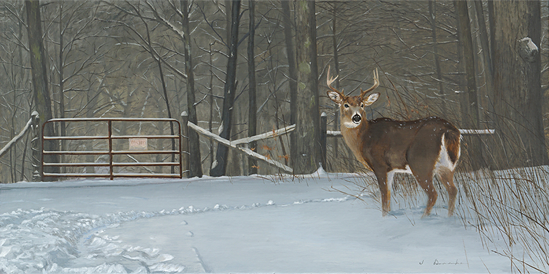 "No Trespassing    - oil on linen, 18 x 36"" Sold"