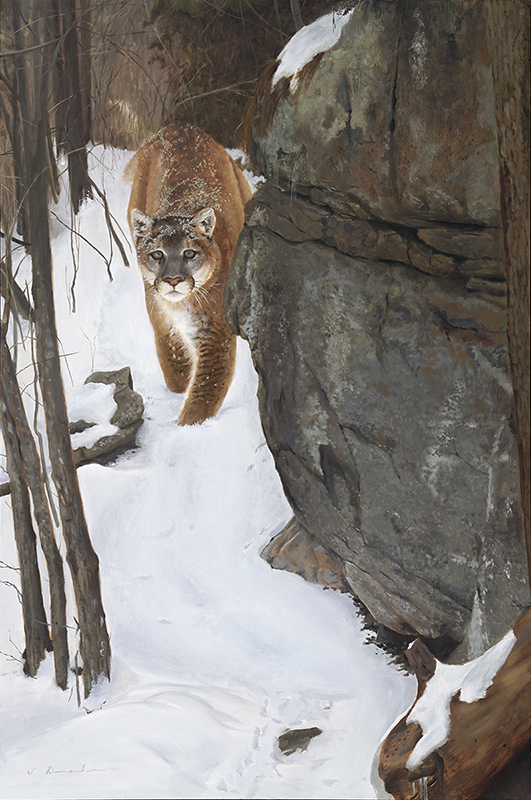 Close Encounter    - oil, 36 x 24""