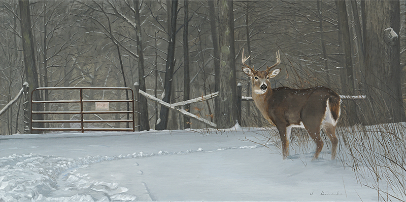 "No Trespassing    - oil, 18 x 36"" Sold"
