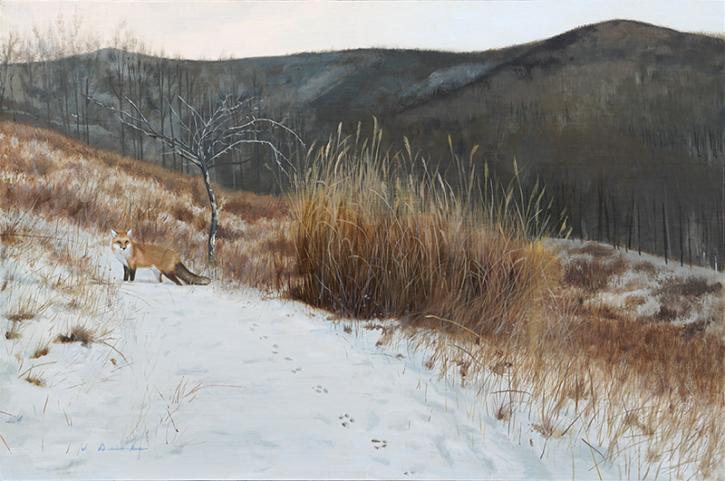 Tracks in the Snow    - oil, 16 x 24 Sold