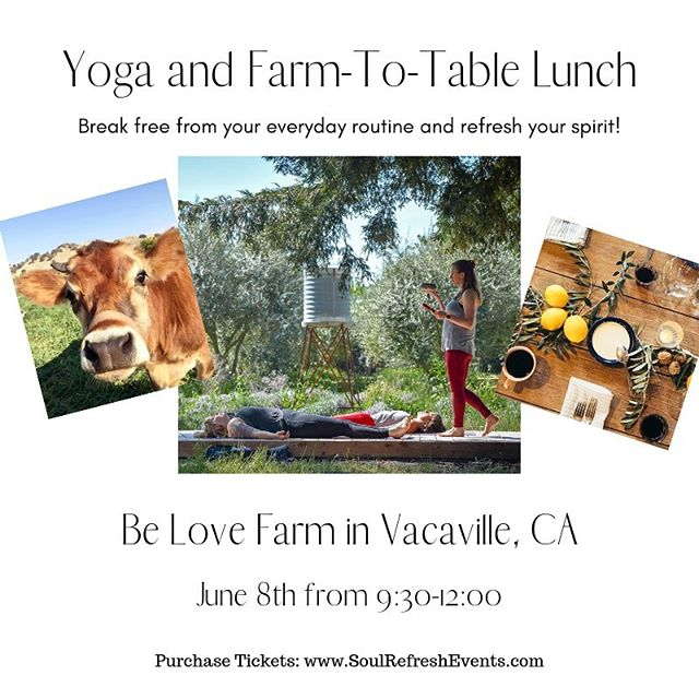 One week until we tap into nature's invitation to go outside and spend a refreshing morning on one of Vacaville's most special farms. Join us for a yoga, meditation and farm-to-table lunch at @belovefarm on June 8 from 9:30-12:00pm. Link in bio to reserve your spot!