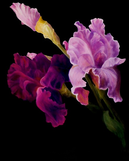 """Iris Beauty"""