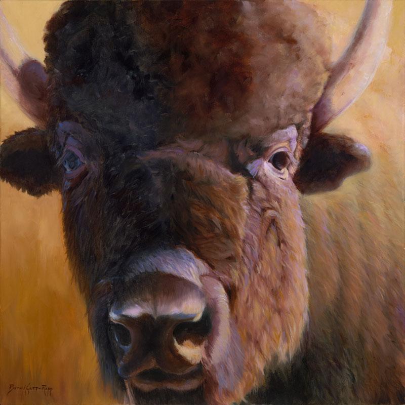 '7th Avenue Bison