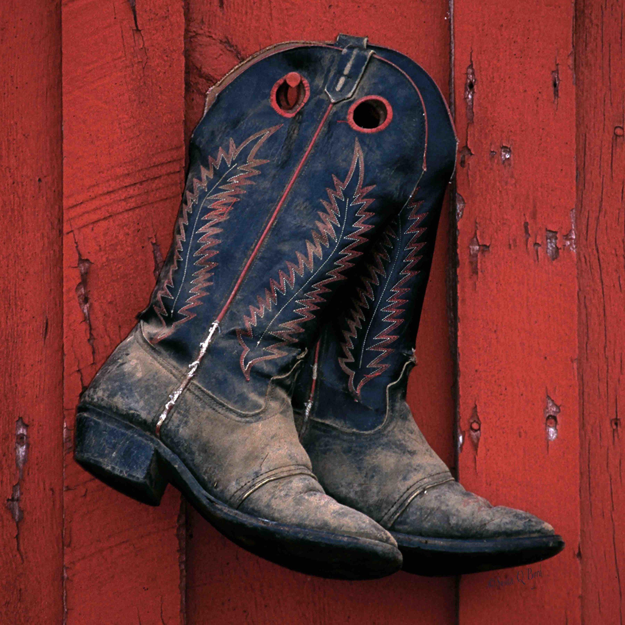 Red Barn Boots ©SQByrd_12x12@300 2mb sig.jpg