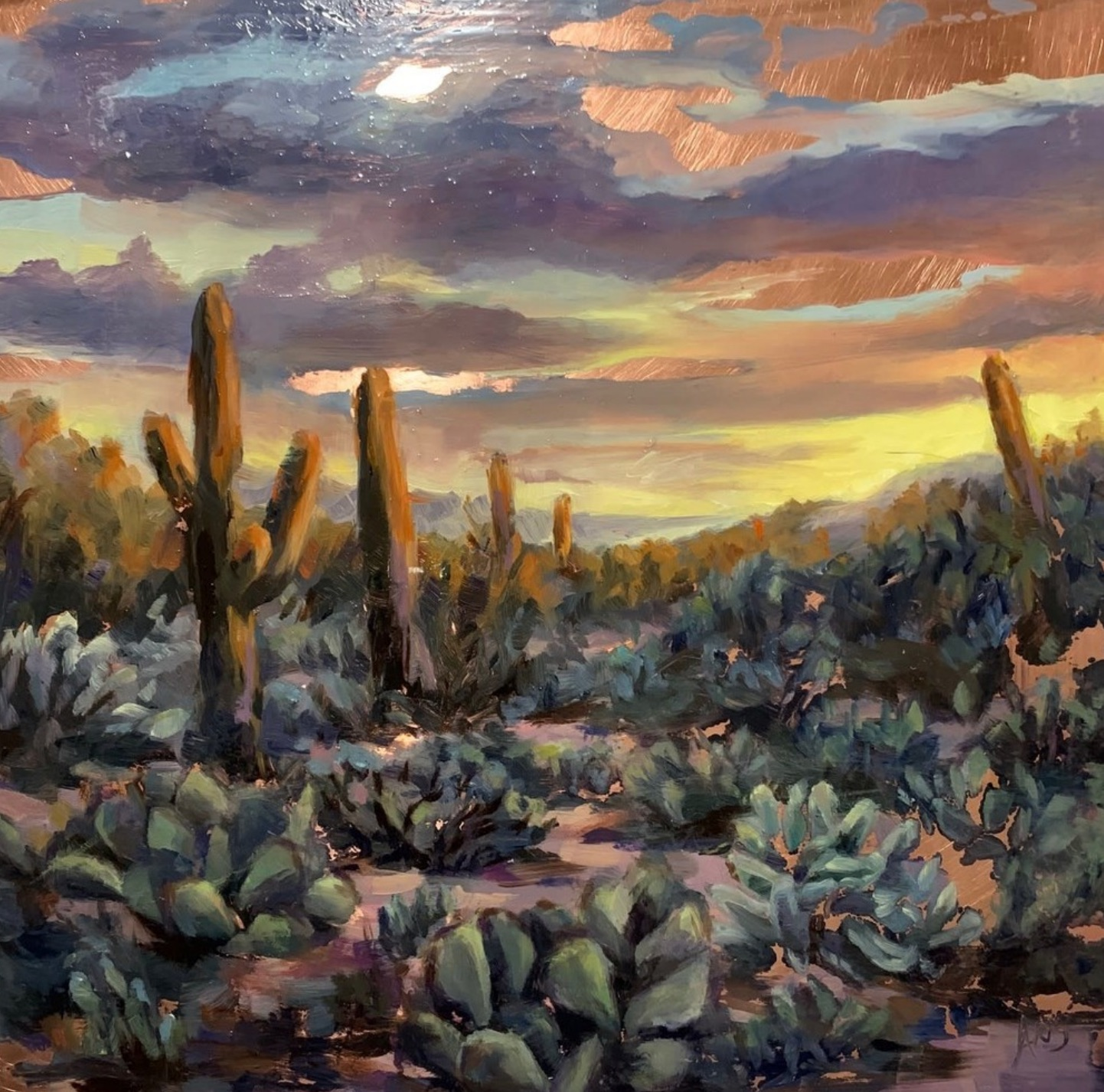 Sonora Sunset - Copper State Series.jpg