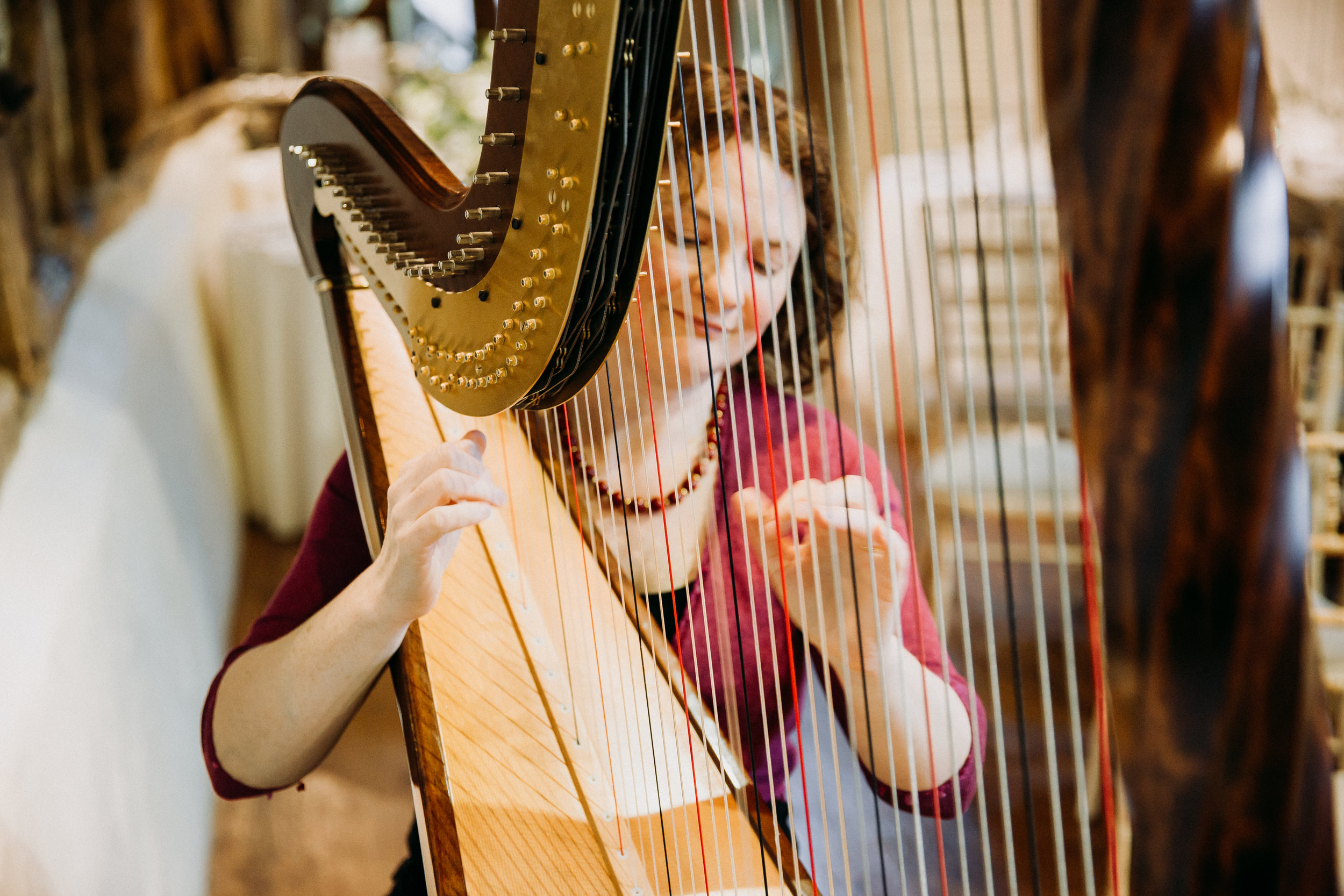 Harpist at Old Luxter's Barn at The Chilterns wedding