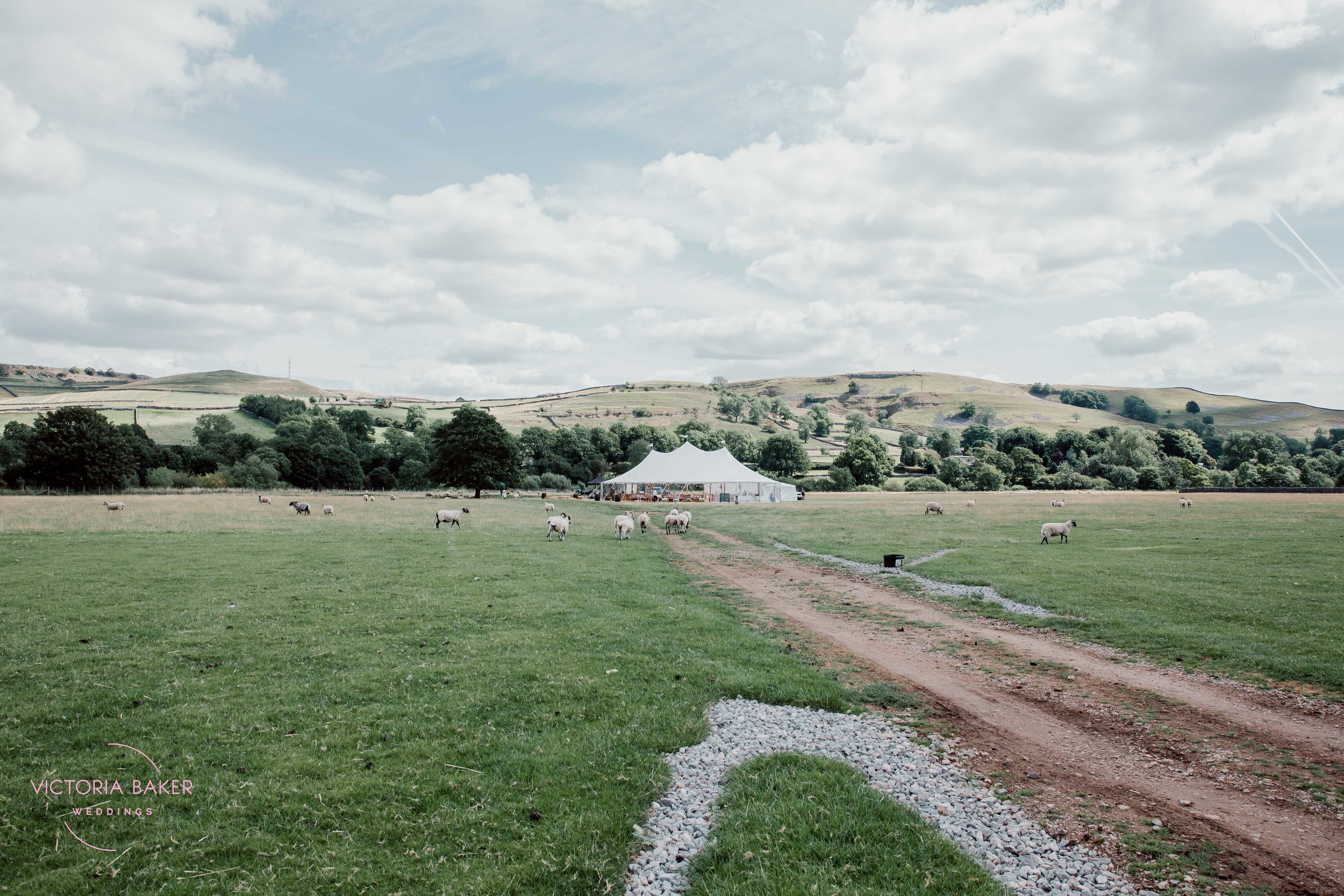 Festival wedding at Kilnsey Park Estate