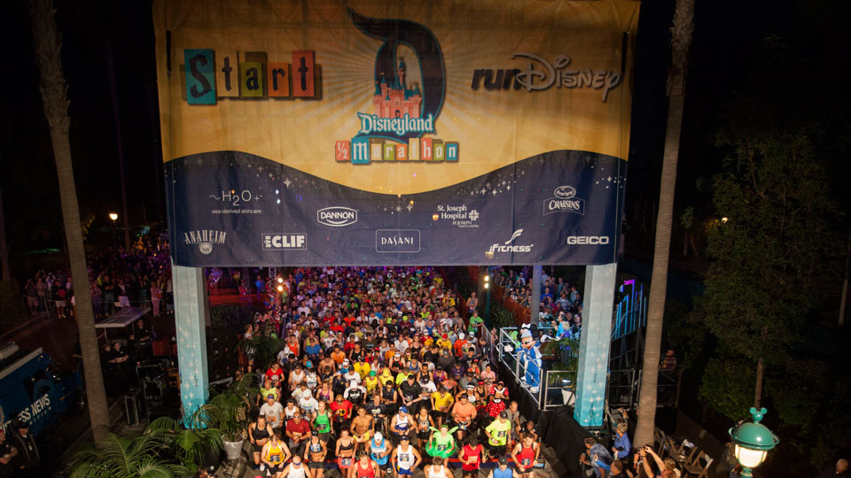 Disneyland 1/2 Marathon. If you look close you can see Christy down there to the left...(not really, but she was in the pack!)