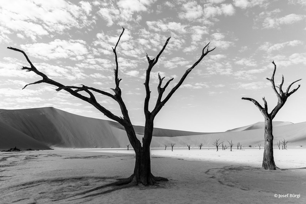 assignment-291-black-white-landscapes-josef.buergi-0-1496346827.jpg