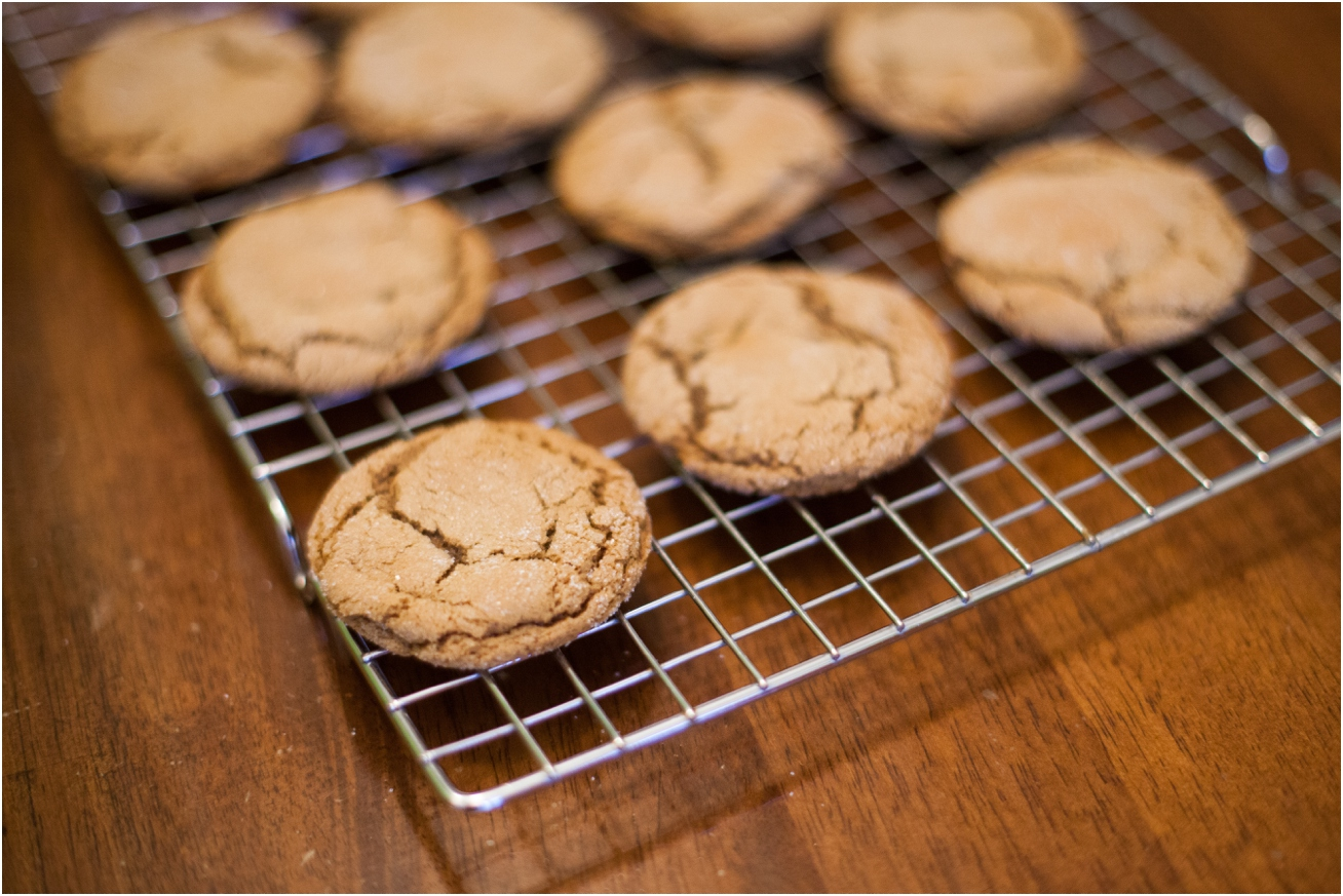 World's Best Molasses Cookies - Ginger Moose Photography (4).jpg