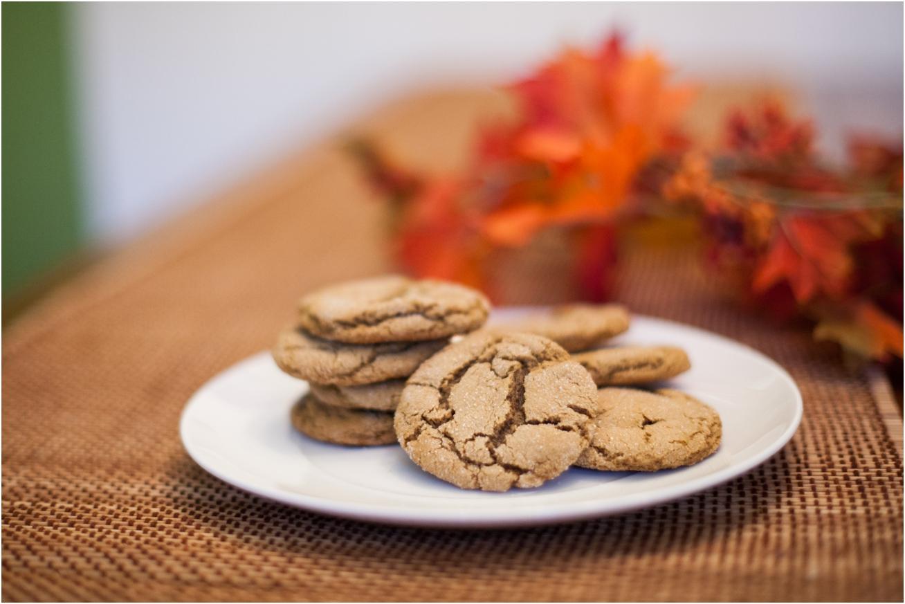 World's Best Molasses Cookies - Ginger Moose Photography (5).jpg