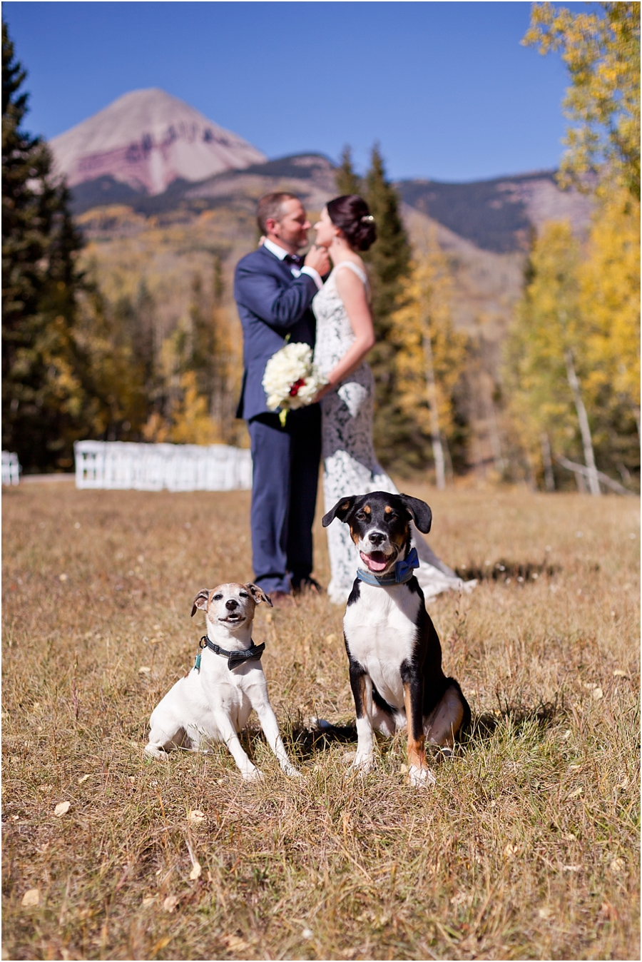 durango-dog-friendly-wedding-photographers.jpg