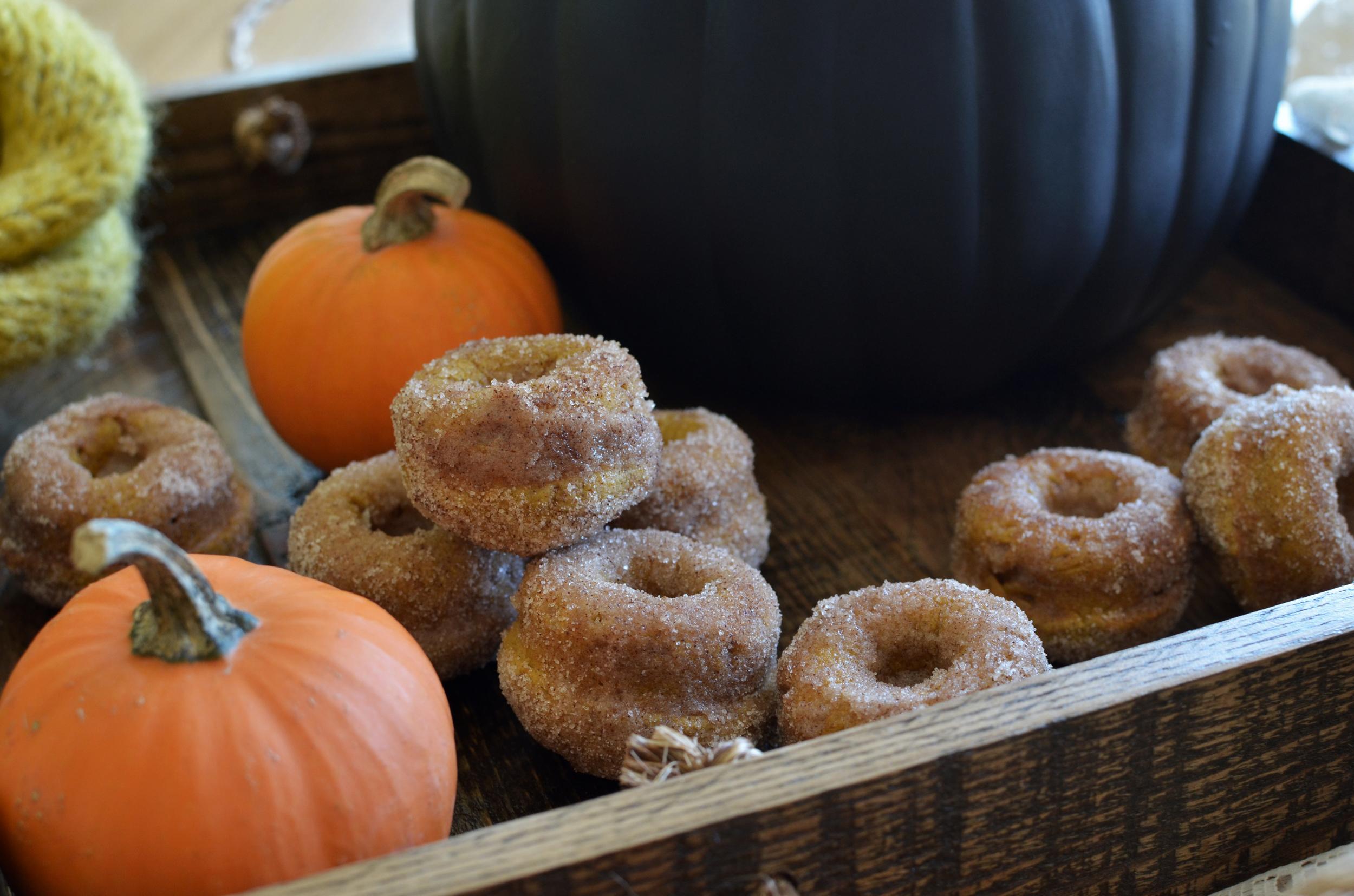 wit+aroma pumpkin mini donuts