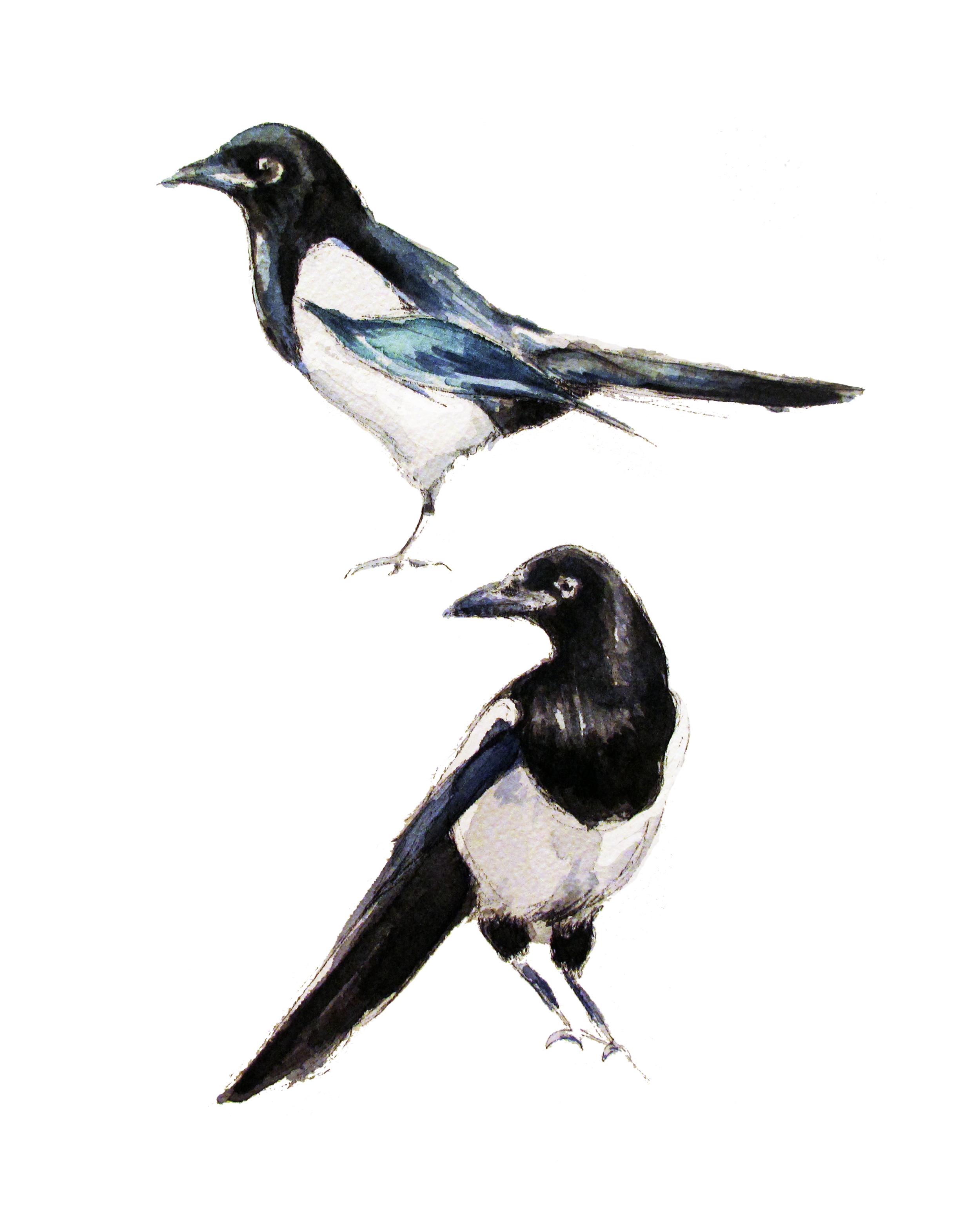 Magpies(ORIGINAL SOLD)