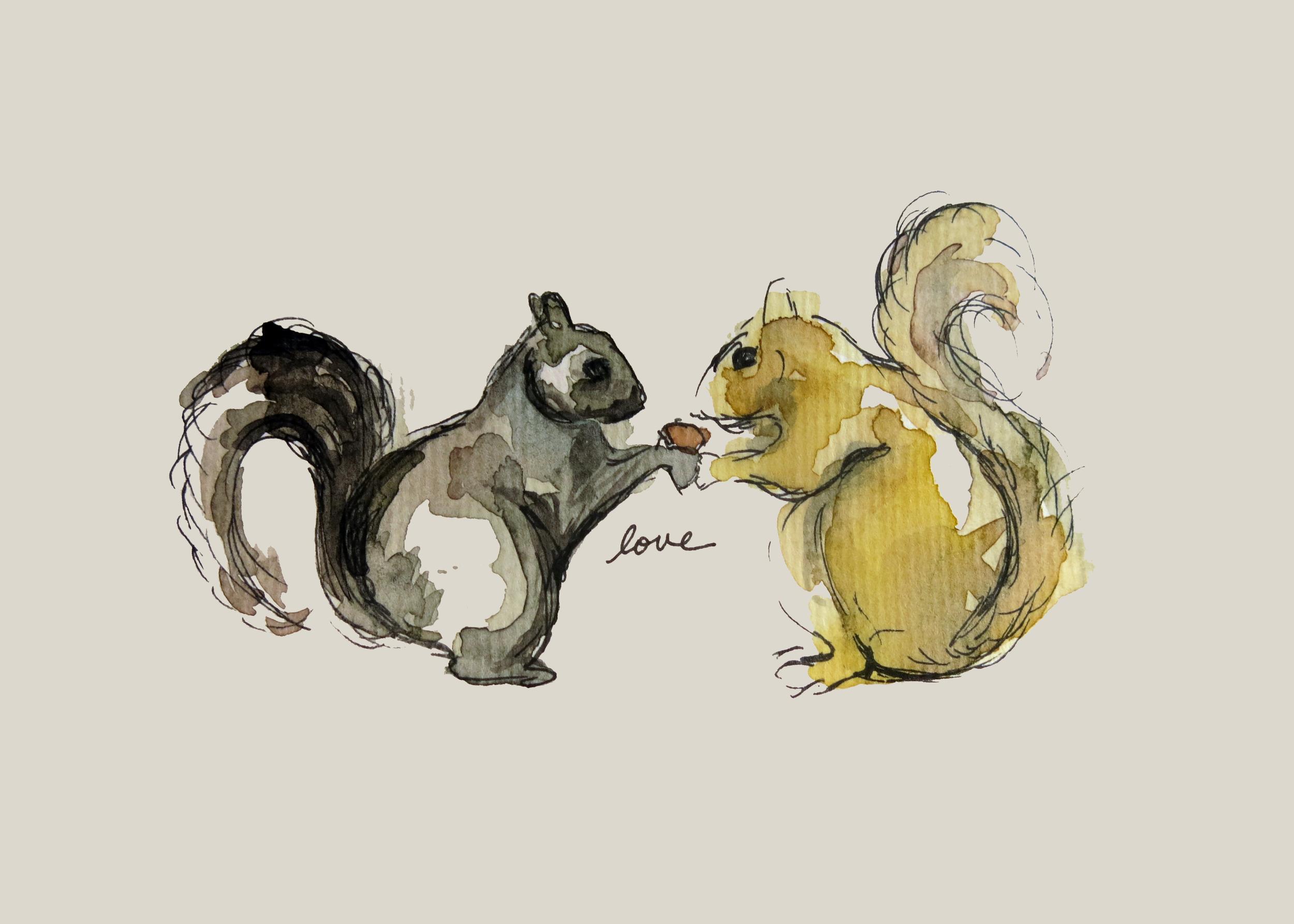5-squirrels-5x7.jpg