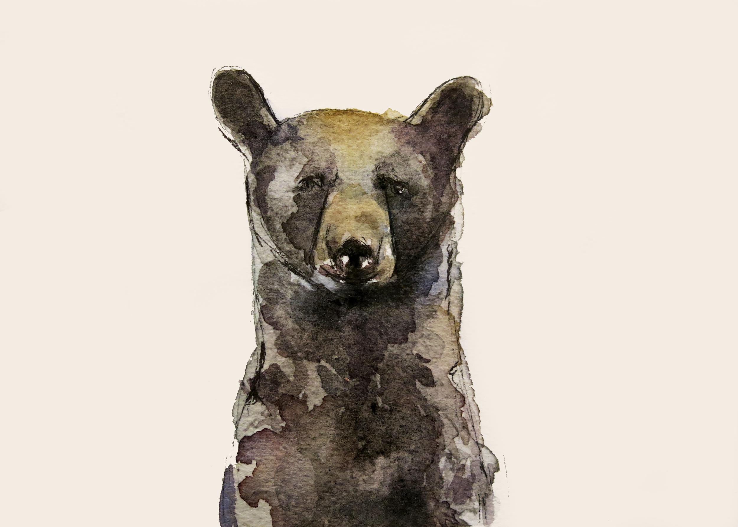Black Bear (ORIGINAL SOLD)
