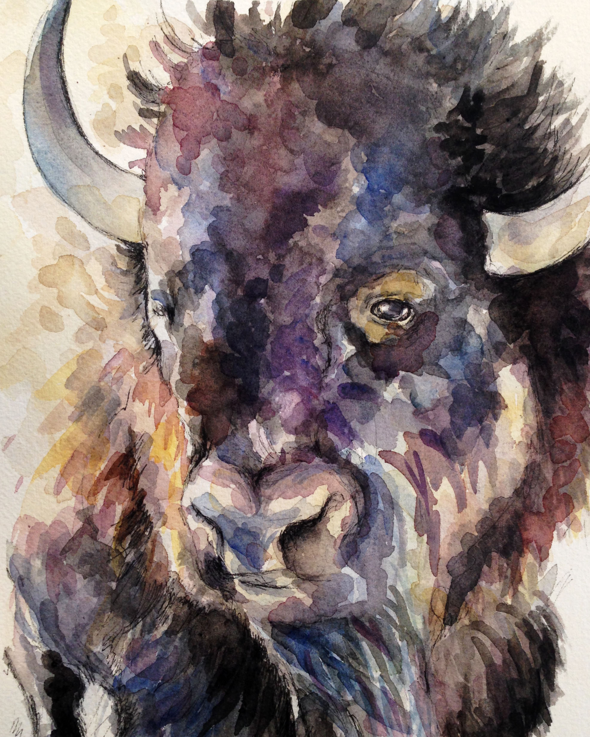 Bison Head (ORIGINAL SOLD)