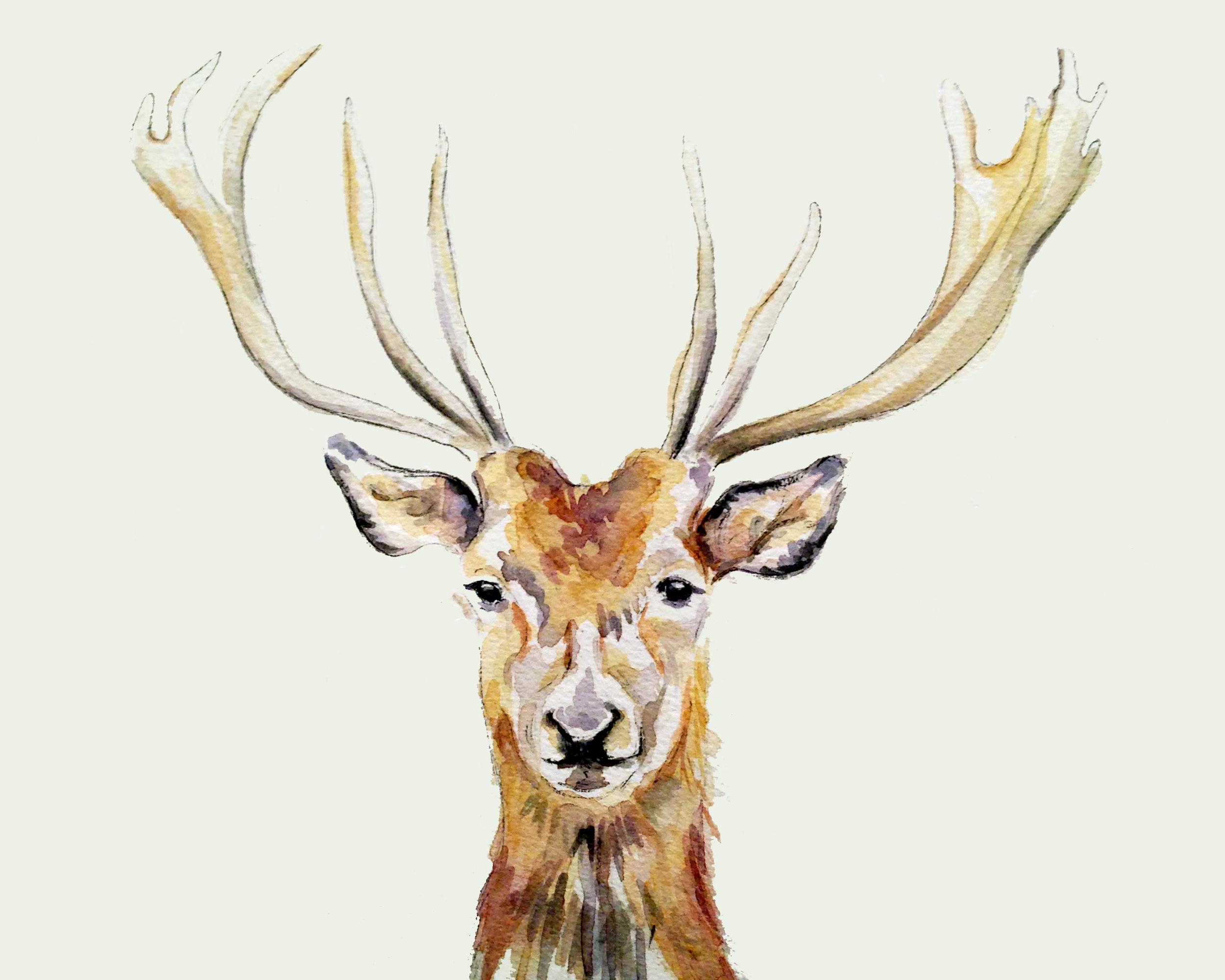Deer (ORIGINAL SOLD)