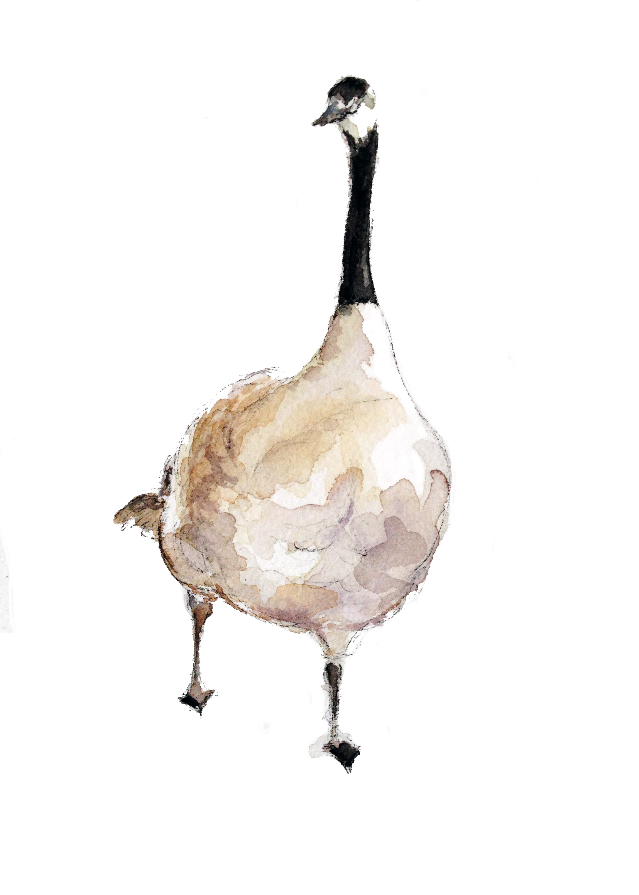 Wandering Goose(ORIGINAL SOLD)