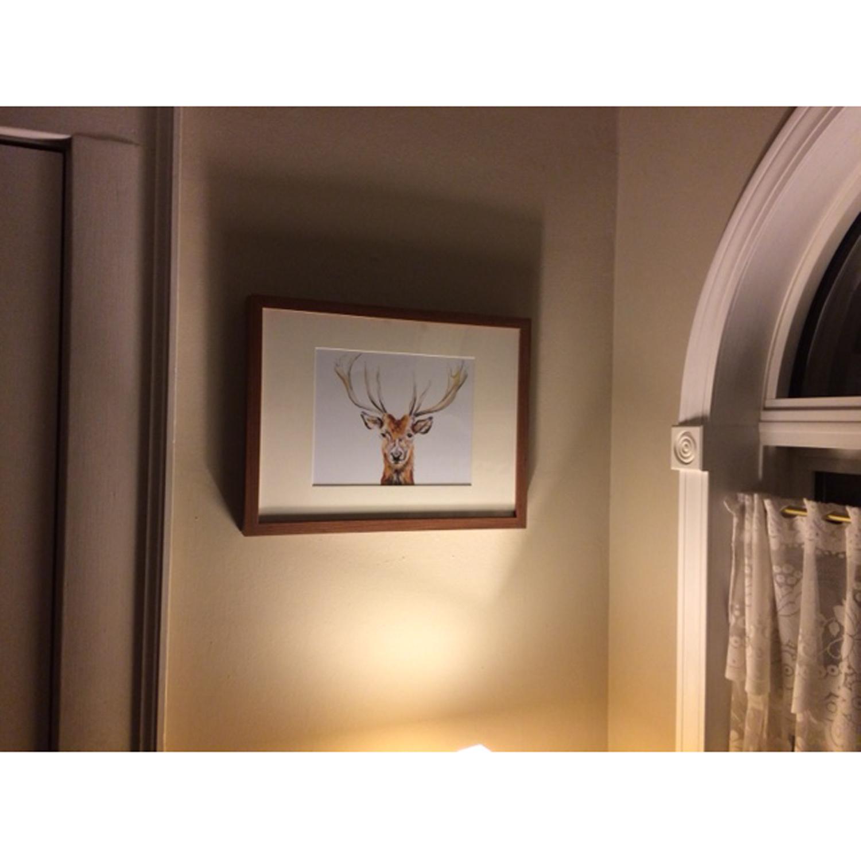 Sarah's deer