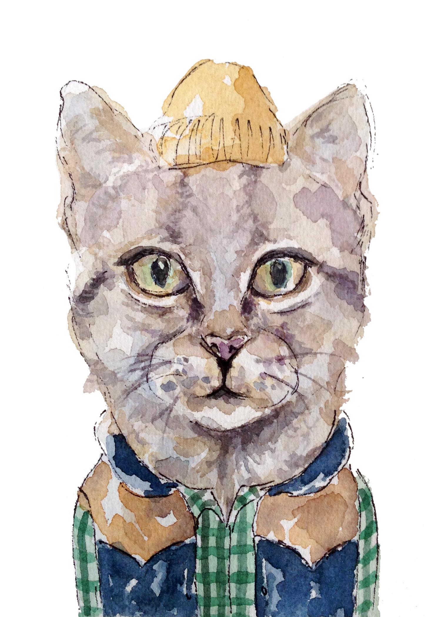Vest Cat