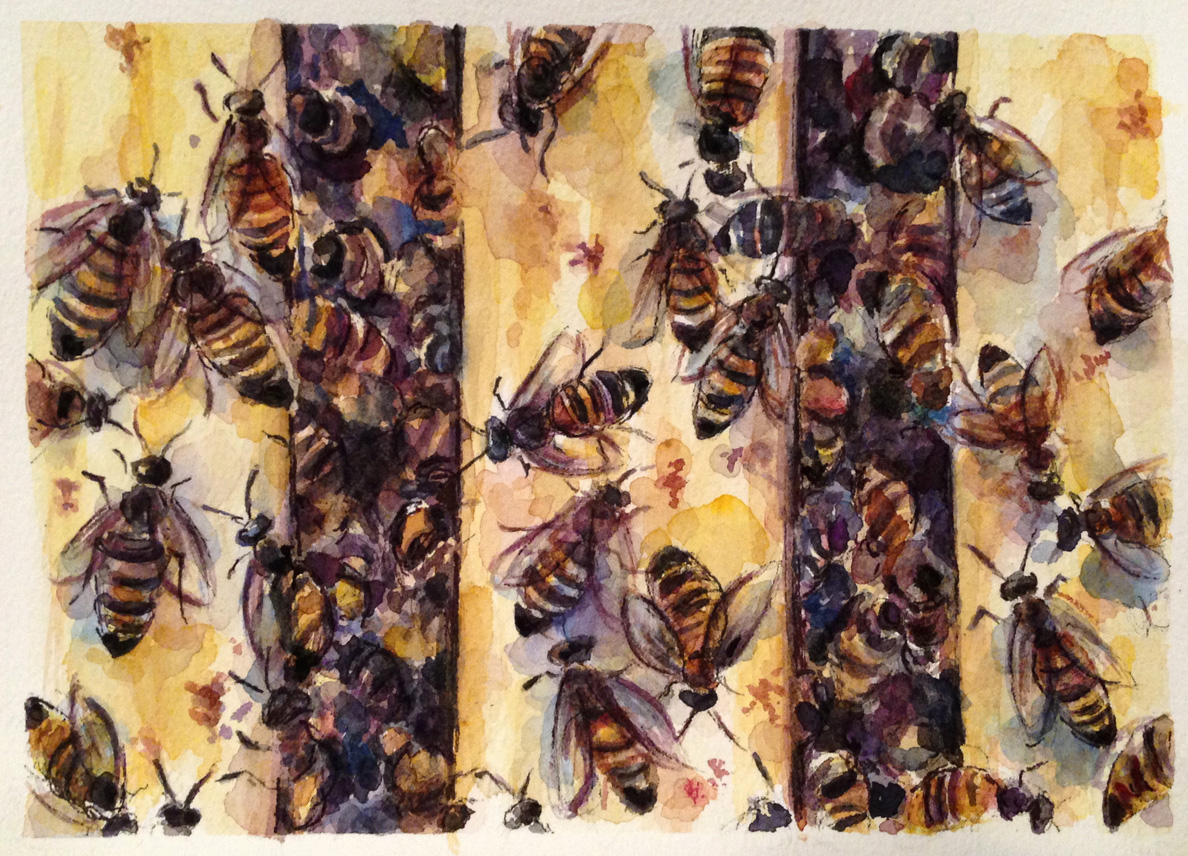 Commissioned bees