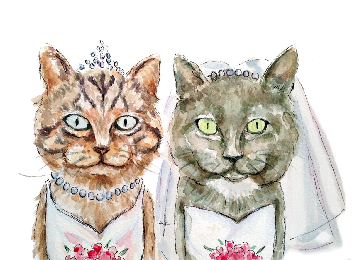 Cat Brides