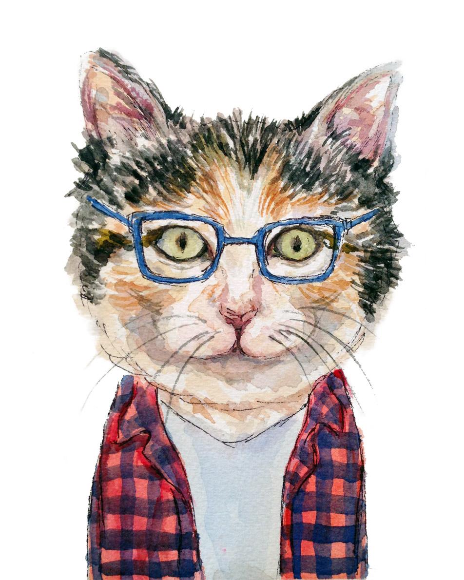 Jemaine Cat