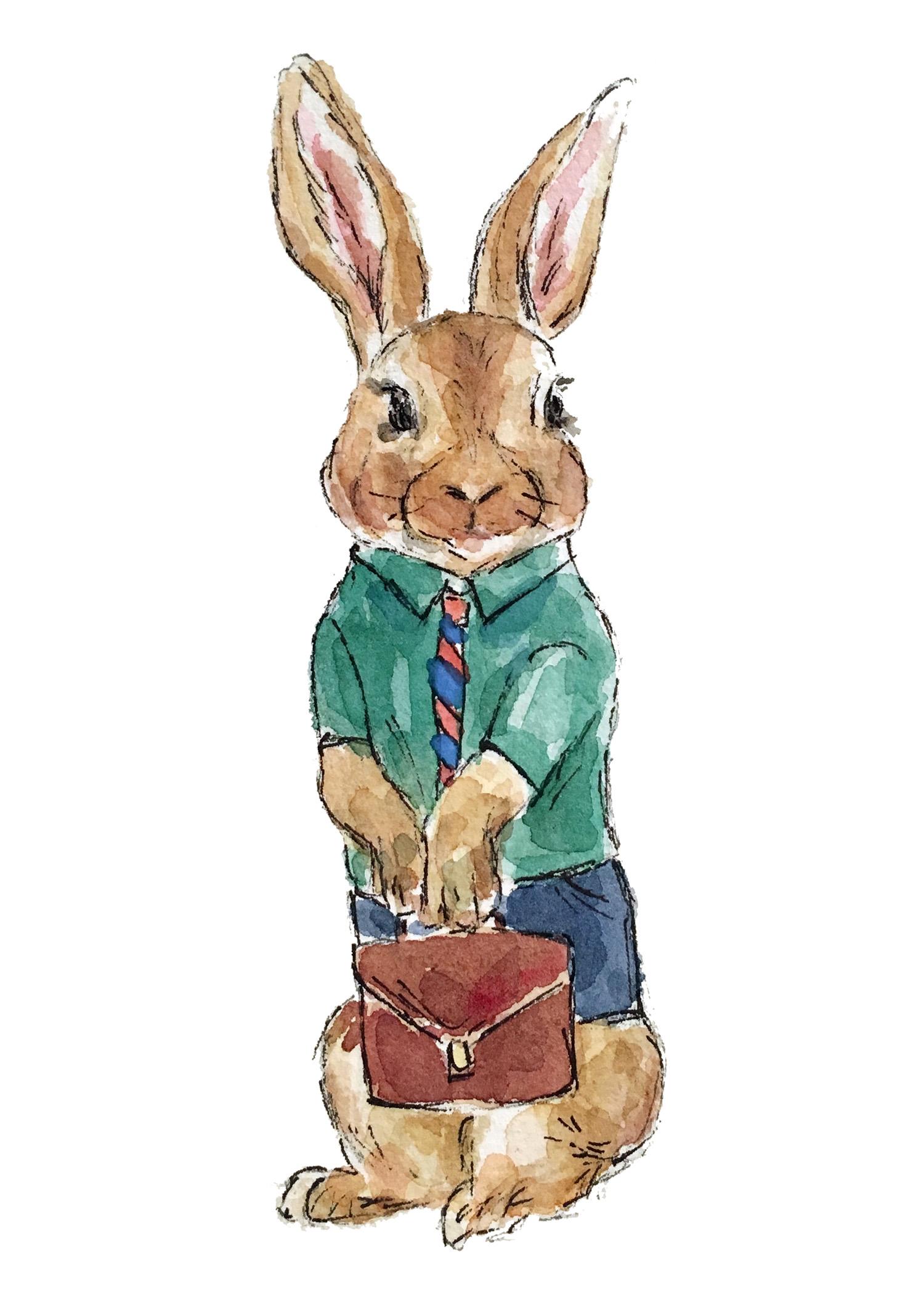 Working rabbit